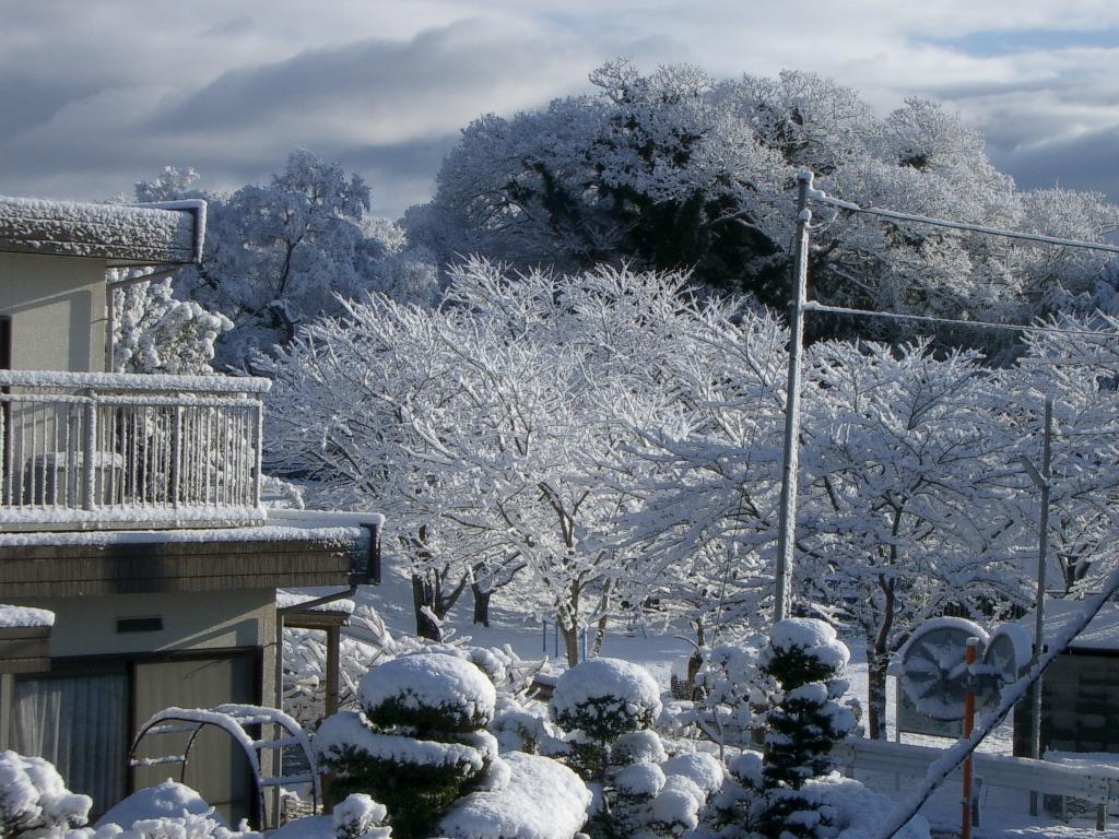 家からみた雪景色