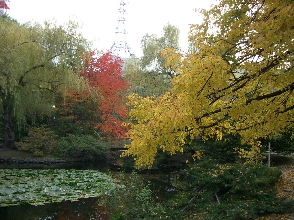 赤レンガ庁舎の紅葉